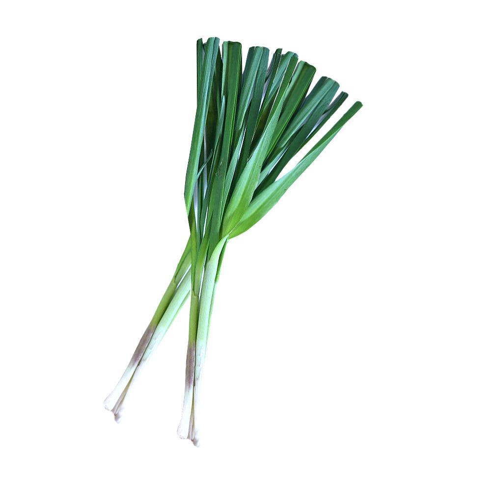 usturoi verde